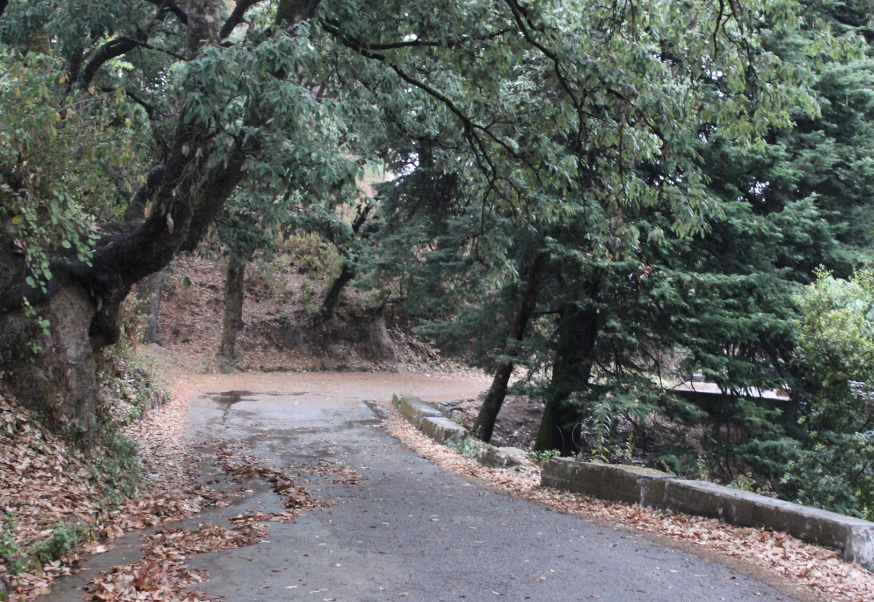 The roads outside Prem Sadan