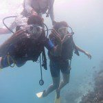 Ship Wreck Diving in Maldives