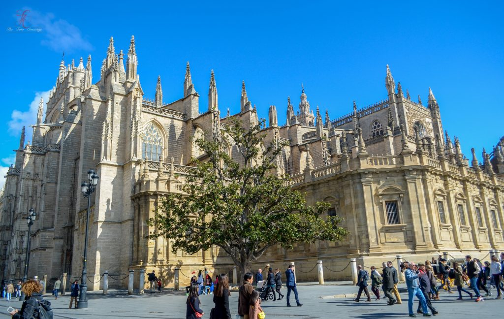 The Gothic Seville Cathedral