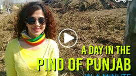 A Day In The Pind Of Punjab