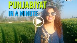 Punjabiyat In A Minute Feature Image