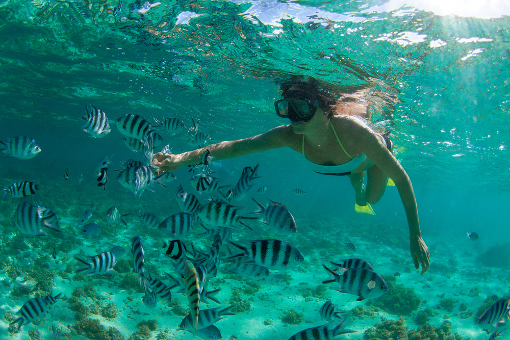 Snorkelling, Mauritius