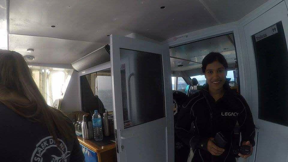 Before the Shark DIve at Shark Dive New Zealand.