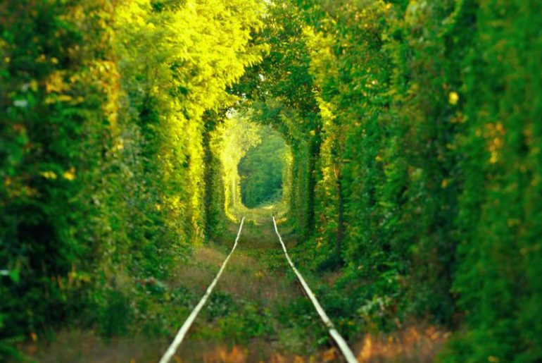 The Tunnel of Love, Klevan, Ukraine