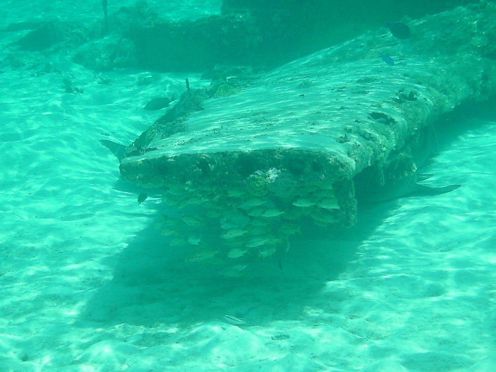 There's A Plane-Wreck Dive Site That's Just 6ft Under Water