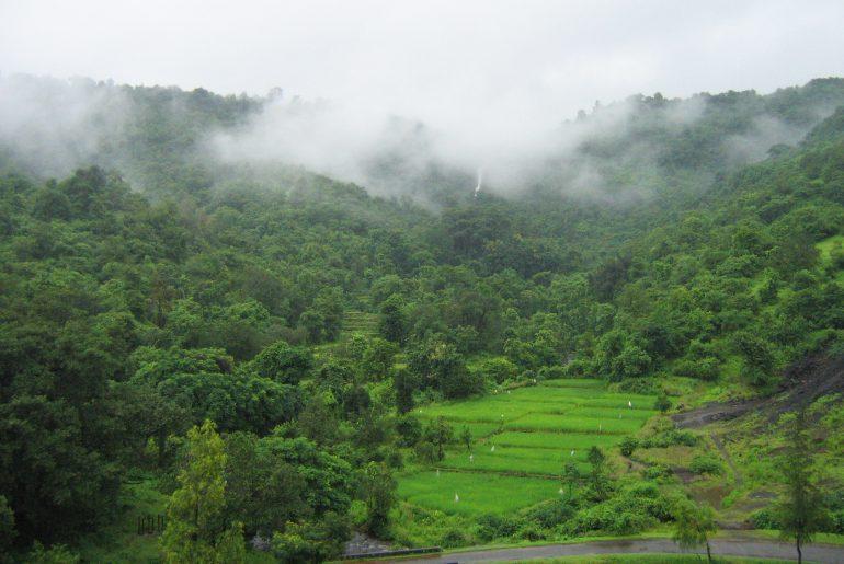 Konkan_Railway_-_views_from_train_on_a_Monsoon_1