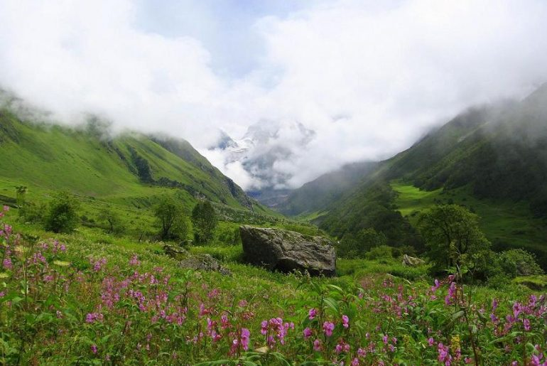 Valley_of_flowers_uttarakhand