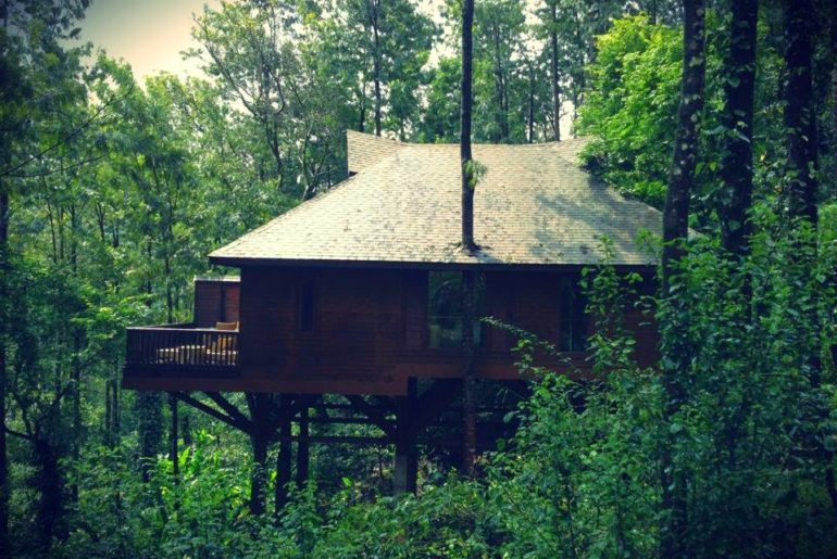 6 Amazing Tree House Resorts Of India That Look Absolutely Magical