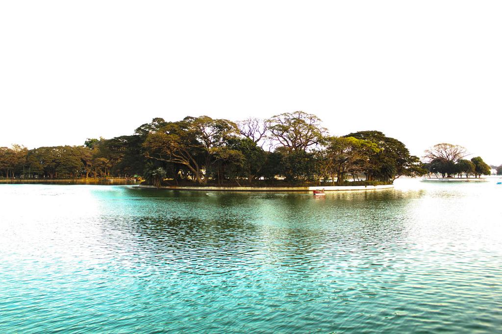 Curly_Tales_Ulsoor_Lake