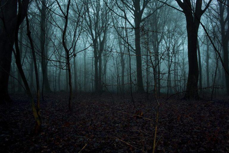 Sanjay_Van_haunted