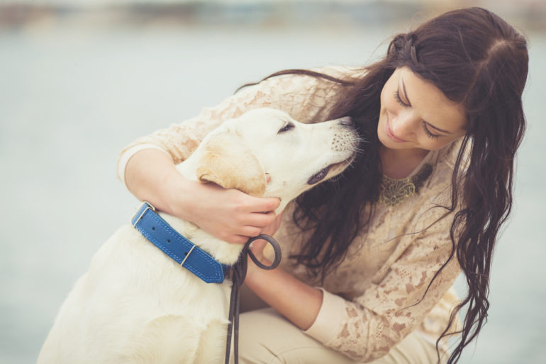 hug your hound