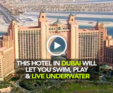 Atlantis The Palm In Dubai Is The Ultimate Holiday Destination