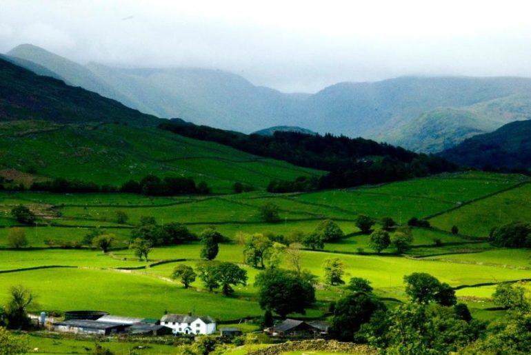 Ziro-Valley-