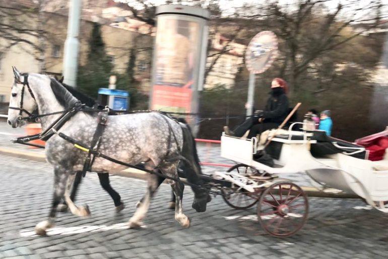 Prague Vibe