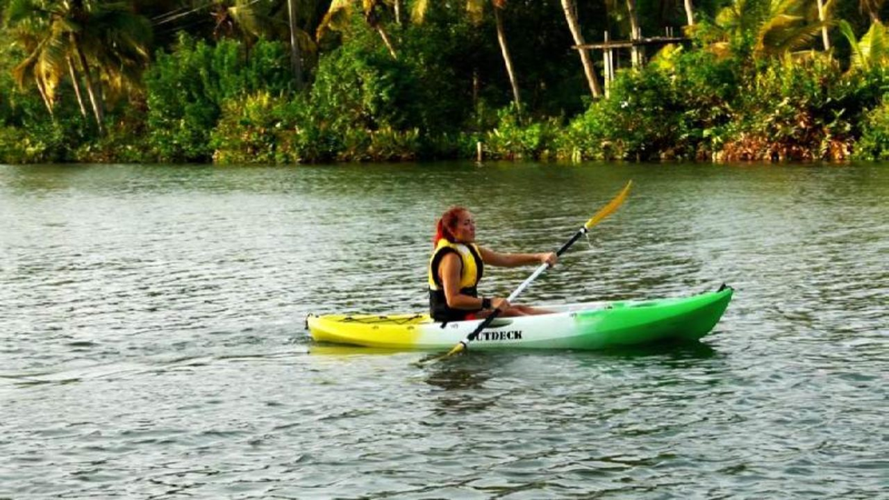 Kayak In The Backwaters Of Kerala In Alappuzha | Curly Tales
