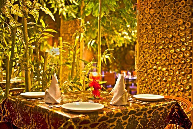 jaipur jungle