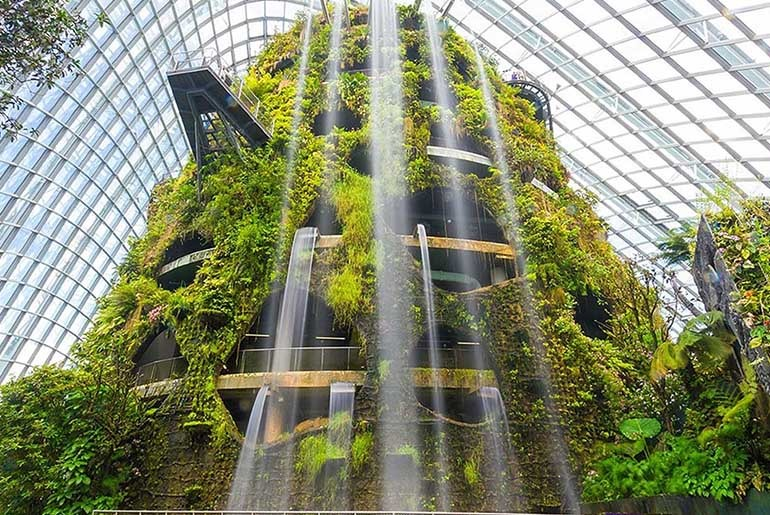Cloud Forest In Singapore | Curly Tales