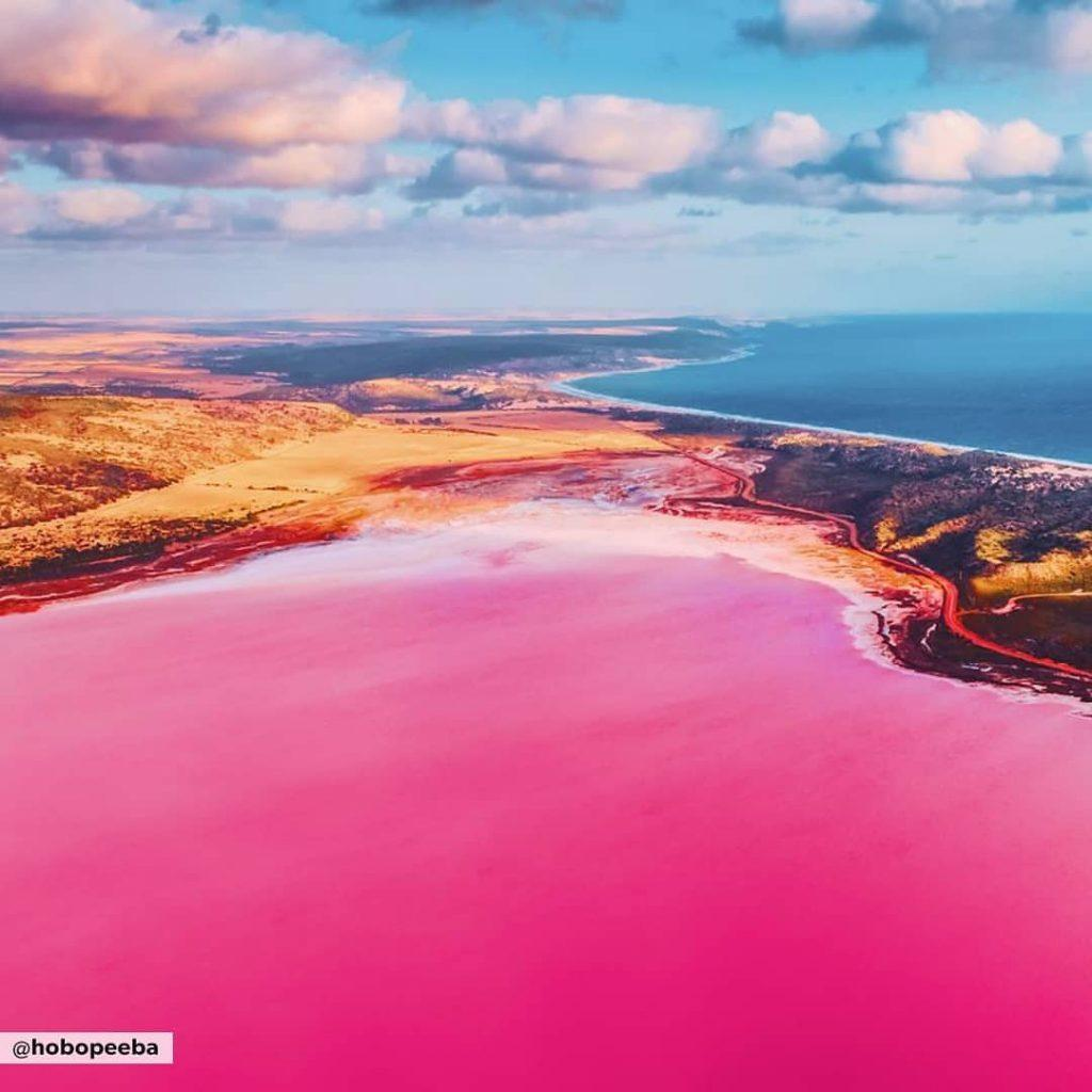 This Pink Lagoon In Australia Holds You Enchanted   Curly Tales