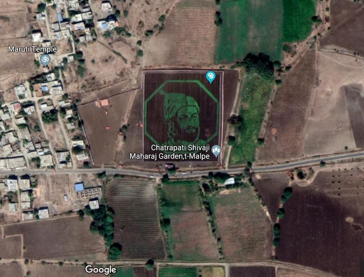 Video Of Shivaji Maharaj's Art Work On A Crop Field Goes Viral After Seen On Google Maps