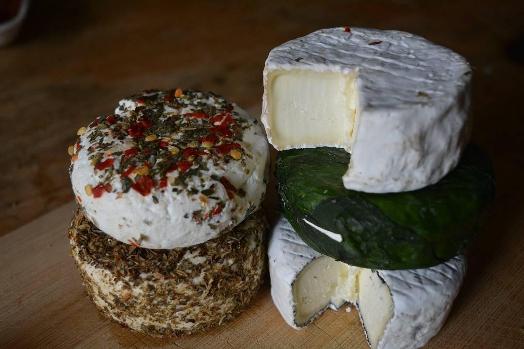 Casa Del Cheese