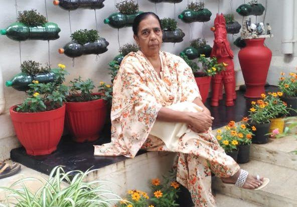 Mysuru Woman, Hashmath Fathima's Garden Wins 11 Awards In A