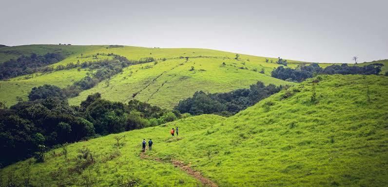Budget New Year's Getaways From Bangalore, kodachadri