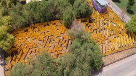 Wonder maze