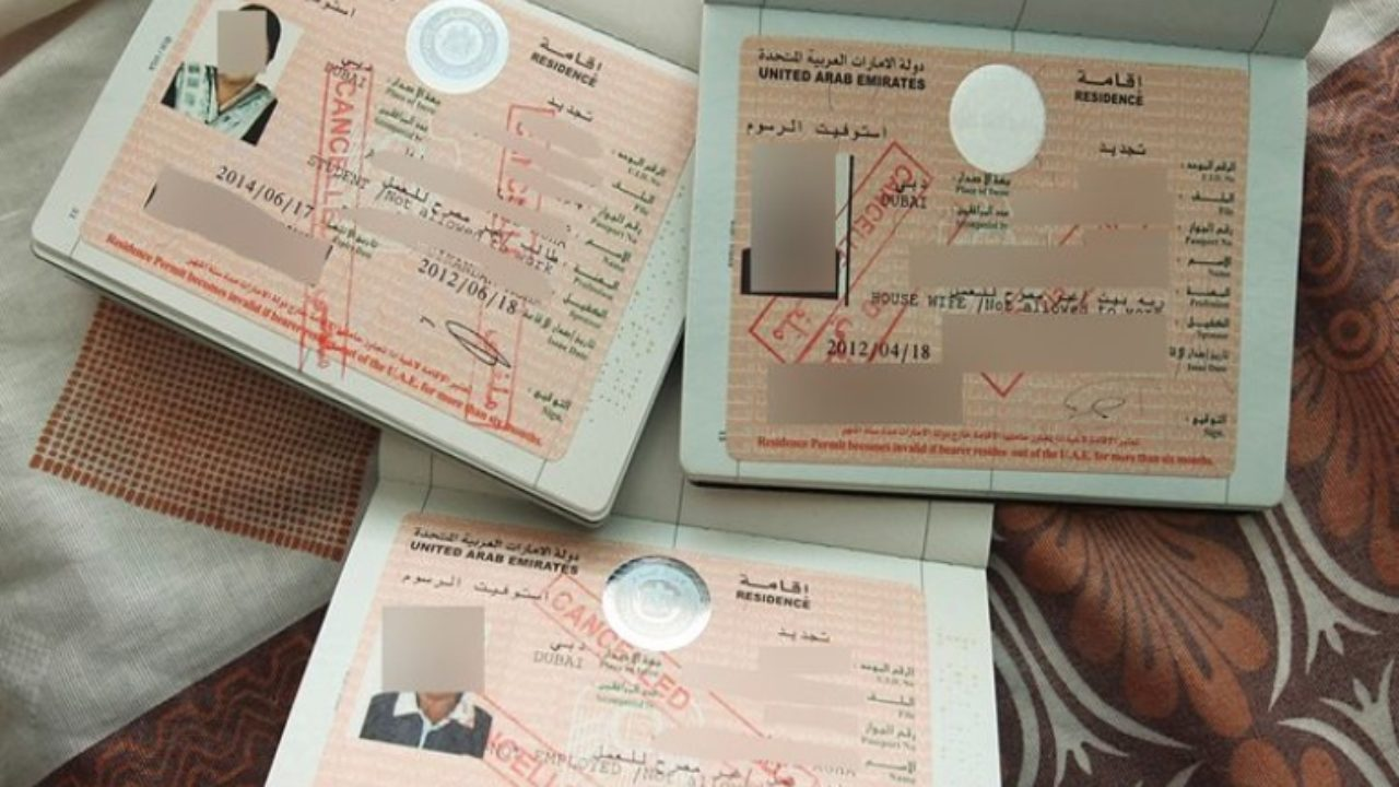Cancelled Uae Visas Everything You Need To Know Curly Tales