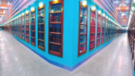 Rajasthan has Asia's biggest library