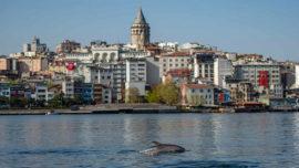 Bosporus Strait of Istanbul