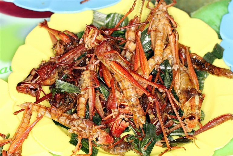 locusts delicacy in these countries