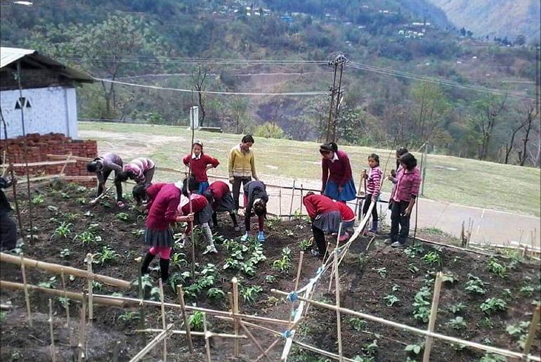 Nagaland School Kids Grow Vegetables