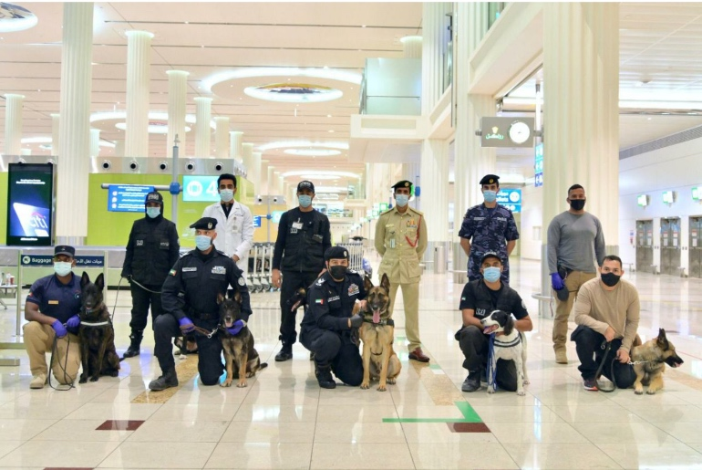 sniffing dogs ready for detecting COVID