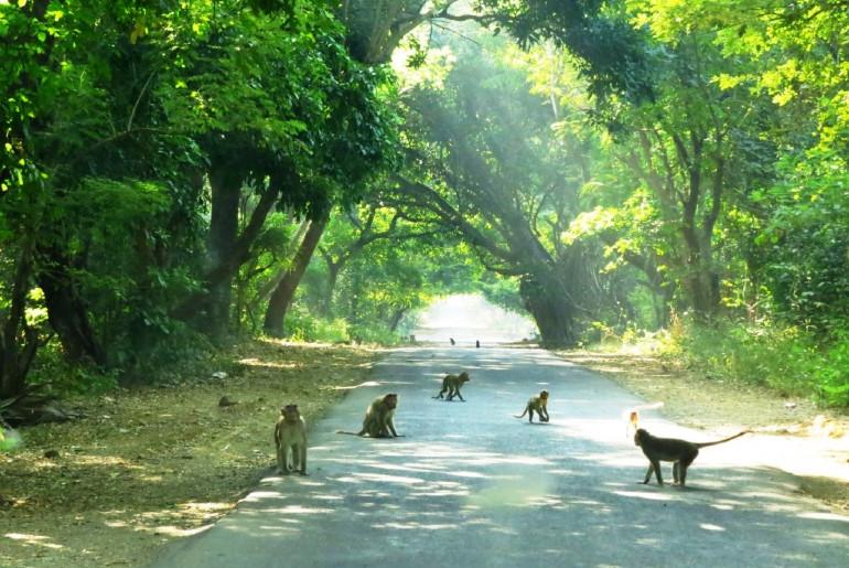 running mumbai
