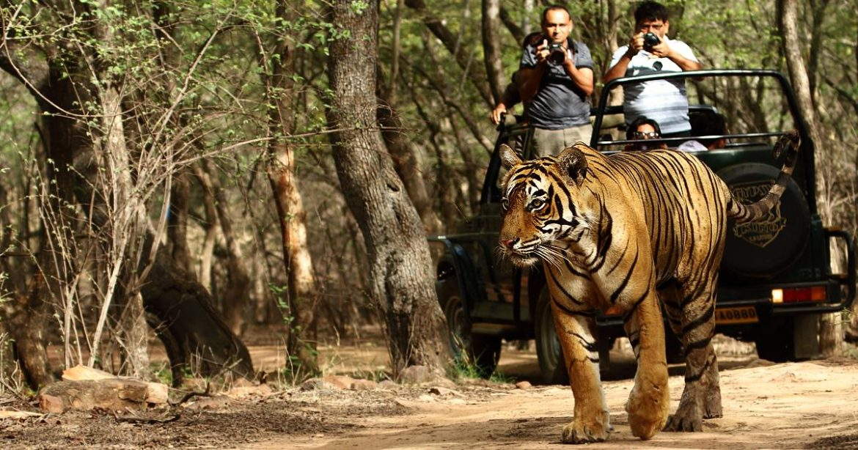 National Parks Delhi