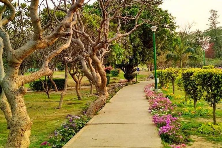 Delhi NCR Morning Walk Parks