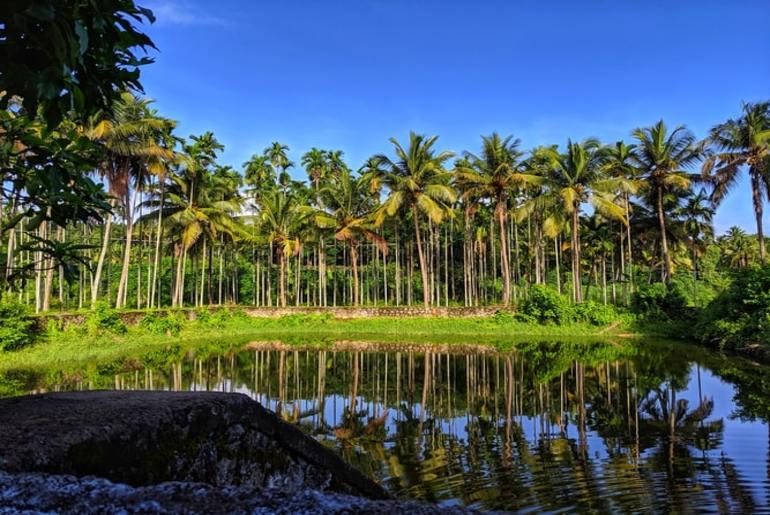 Village Tourism Bihar Kerala
