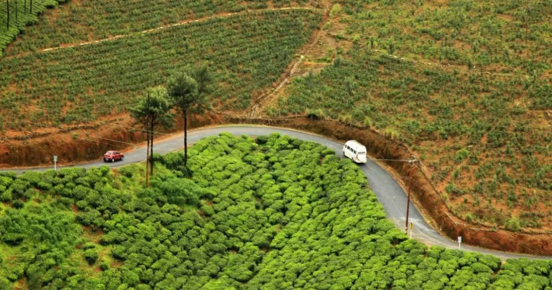 Vagamon Kerala Green Checkposts