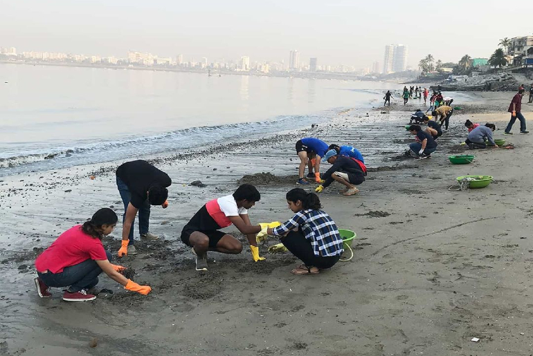 Mahim Beach Sandy