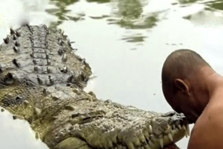 crocodile in kerala temple