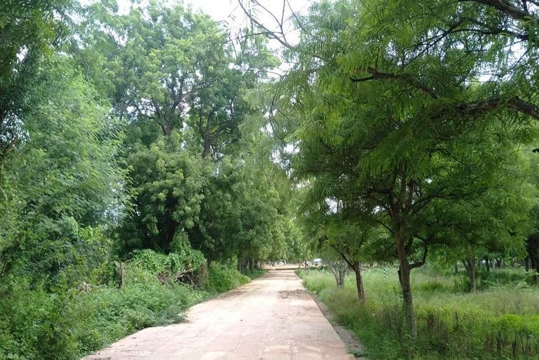 Mathura Parks Gym Facilities