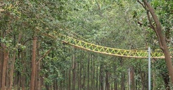 uttarakhand reptile bridge