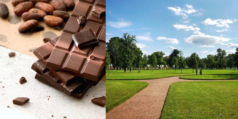 chocolate park karnataka
