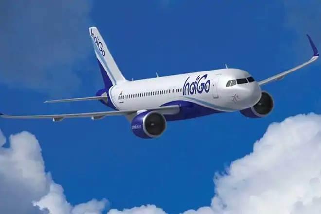 IndiGo IATA Travel Pass