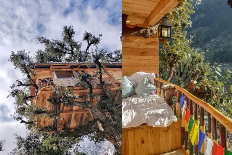 Treehouse Resorts Near Delhi