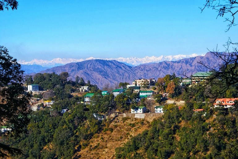 Uttarakhand Covid Negative Test Report