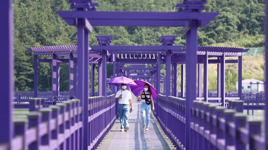 purple islands south korea