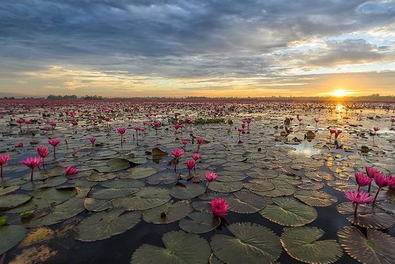 Hidden Lake Indore