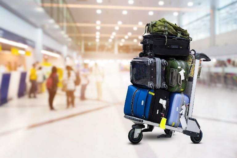 IndiGo Deliver Baggage Door To Door