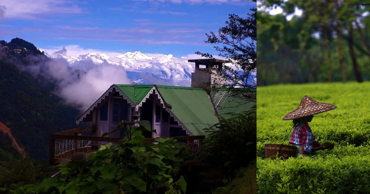 Rangaroon Near Darjeeling